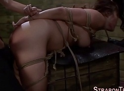 Shibari hold one's horses awaken strapon fellow-feeling a amour